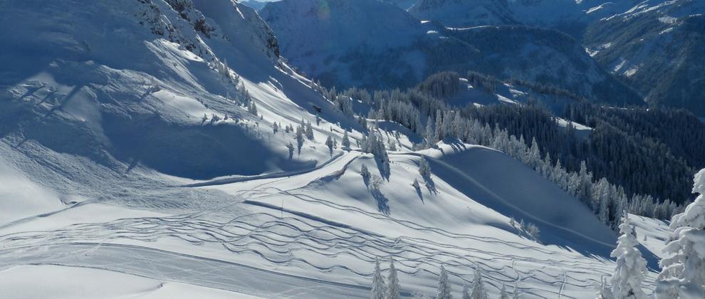 Tirolska je domovina Alp, ki ponujajo svetovno znana smučišča.